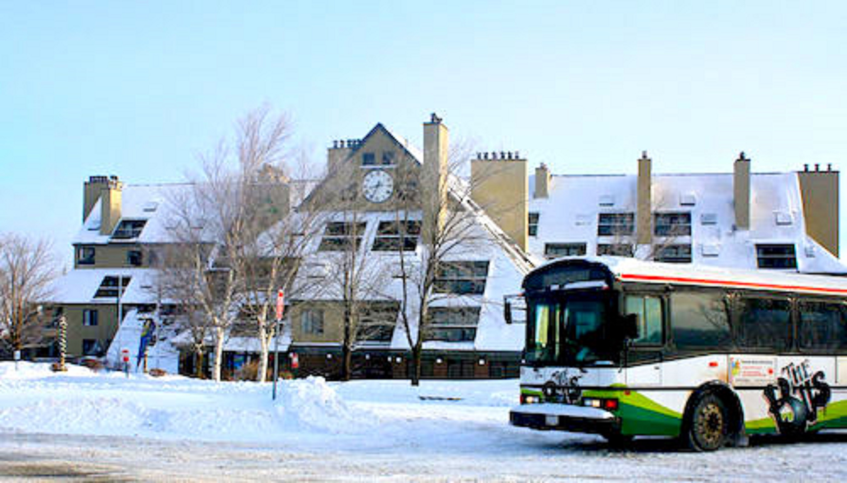 Free Shuttle to Snowshed Lodge
